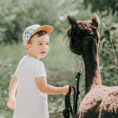 Kinderfotoshooting mit Alpakas in Rheda-Wiedenbrück - Siebenschön Photography