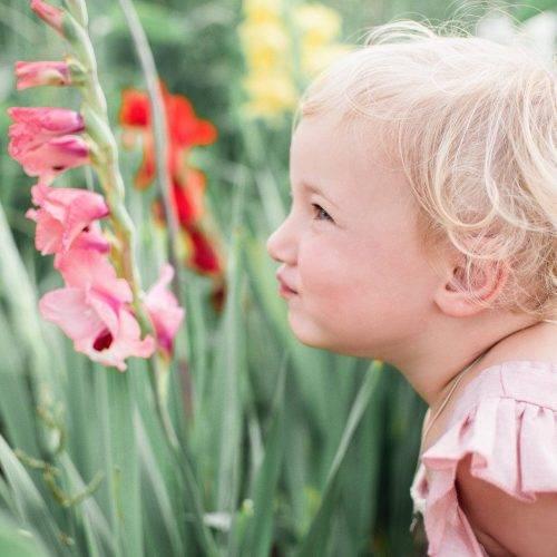 Mädchen in Blumenfeld bei Kindershooting von Siebenschön Photography in der Nähe von Oelde